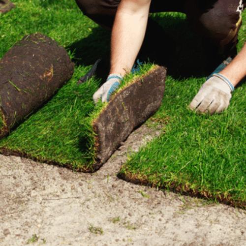 turf laying warriewood