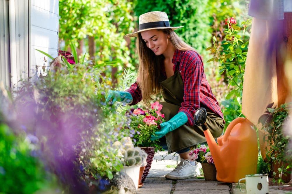 Gardening 101 A Beginner's Guide to Gardening